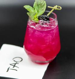 Sake & Cocktail